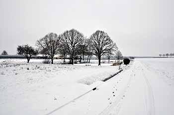 2013_01_19-neige_02