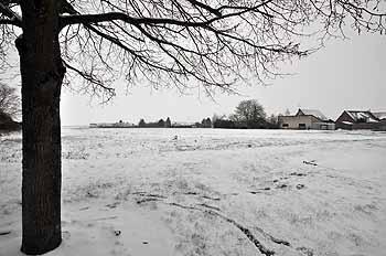 2013_01_19-neige_08